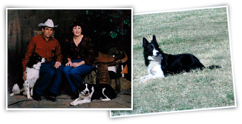 Two photos of the Daniel's family with their wonderful dogs. The photo under is a photo of Brett.